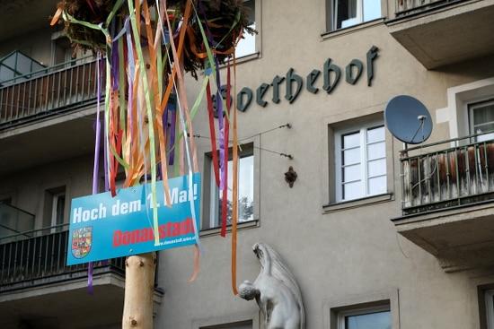 Maibaum des SPÖ-regierten Bezirkes Wien-Donaustadt