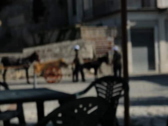 Menschen und Tiere sind billige Arbeitskräfte - Abfallentsorgung in Riace