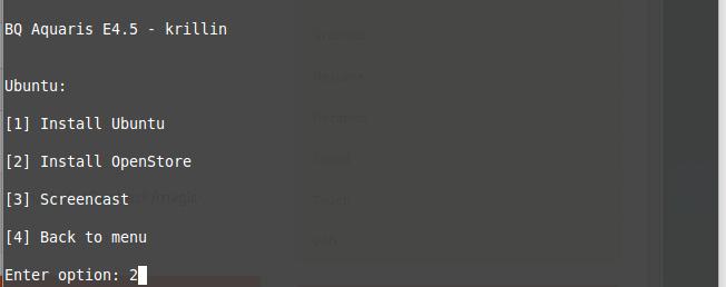 Durchführung der Installation des neuen Ubuntu Images.
